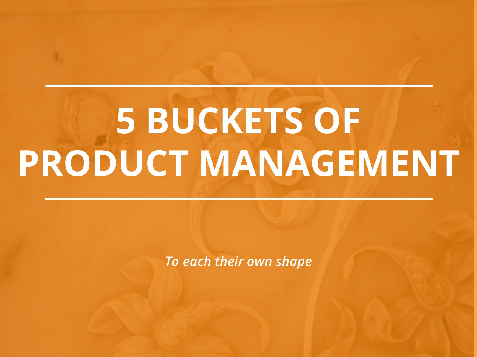Five Buckets Model for Product Management