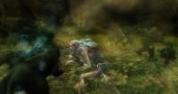 ddmsrealm-ddo-druids-curse-nummy-kitty
