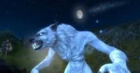 ddmsrealm-ddo-u16-high-road-moon-rising
