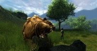 ddmsrealm-ddo-u16-high-road-rawr-bear