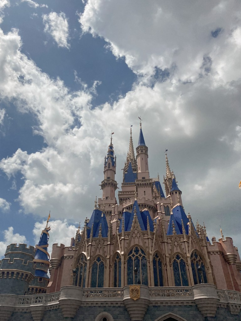 disney castle photo from behind