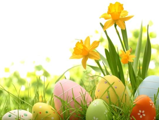 Velikonoční prázdniny v D&D School 18.4. - 23.4.2019