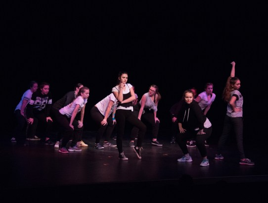 Foto a video z Winter Dance Performance D&D School 2018