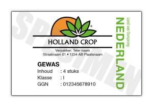 holland crop
