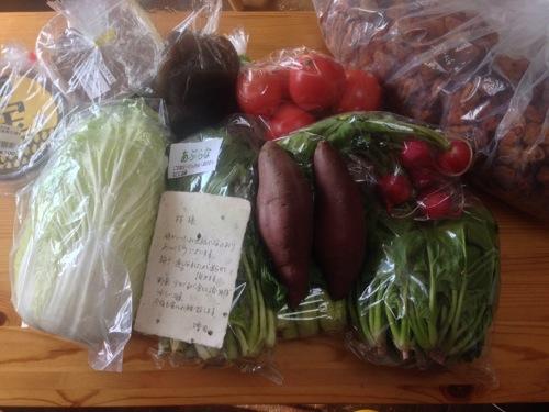 増田さんの野菜と梅干し