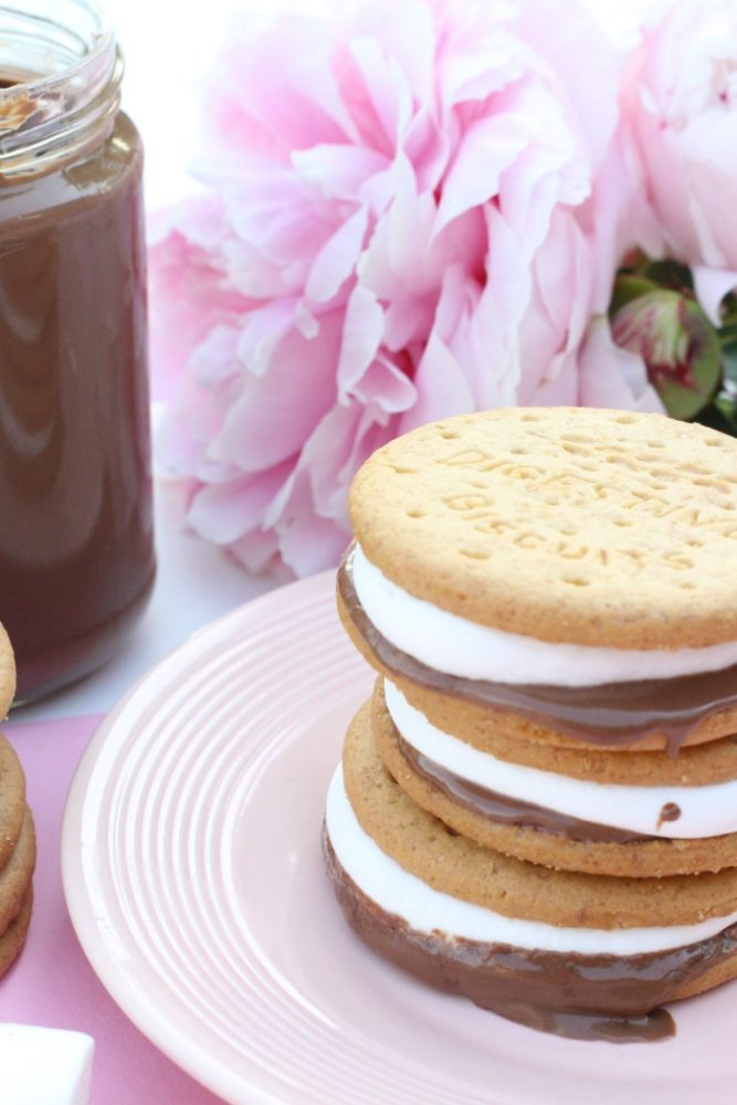 snelle s'mores