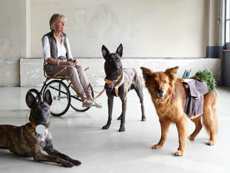Dutch Design Week. De hond als Man's Best Friend