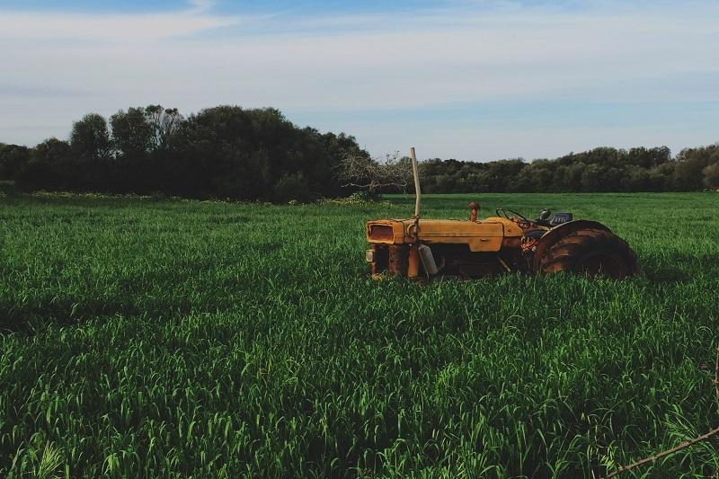 Farm en Country Unsplash