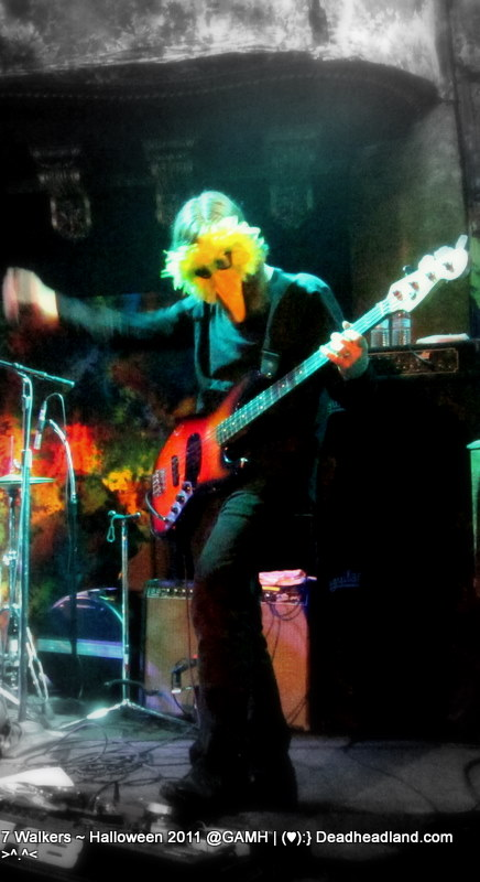 Reed Mathis on Bass  at 7 Walkers Halloween 2011 Great American Music Hall