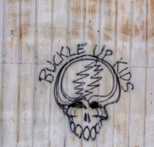 Buckle Up Kids - Steal Your graffiti right off the shed!