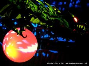 Year of the Dragon - Furthur NYE 2011 > 2012 | (♥);} MarkoVision for DeadHeadLand