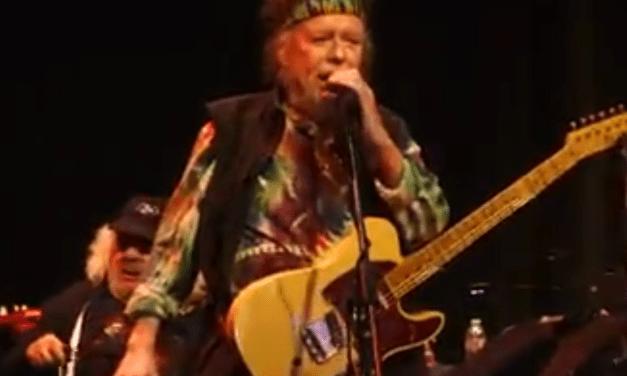 """The Return of David Nelson! """"Rocky Road Blues"""" – David Nelson Band at the Marin JCC 3rd Annual Halloween Ball"""