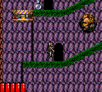 Jurassic Park (Game Gear) - 25