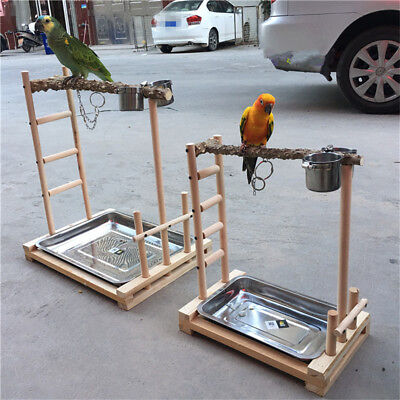 parrot tree stand