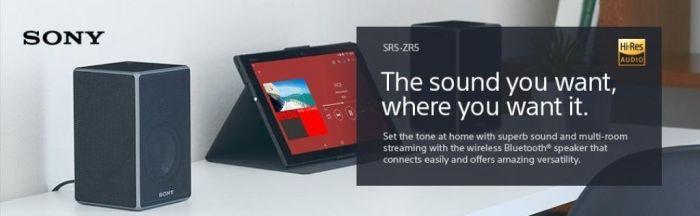 Amazon.com: Sony SRSZR5 Wireless Speaker with Bluetooth/Wi-Fi: Home Audio & Theater