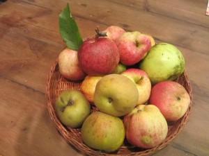 "Whole apples and cloudy apple juice can reduce total cholesterol and LDL (""bad"") cholesterol levels, a study conducted last year has revealed. Other foods that can help include turmeric, globe artichoke and garlic, all of which are used in tincture and tablet form in herbal medicine."