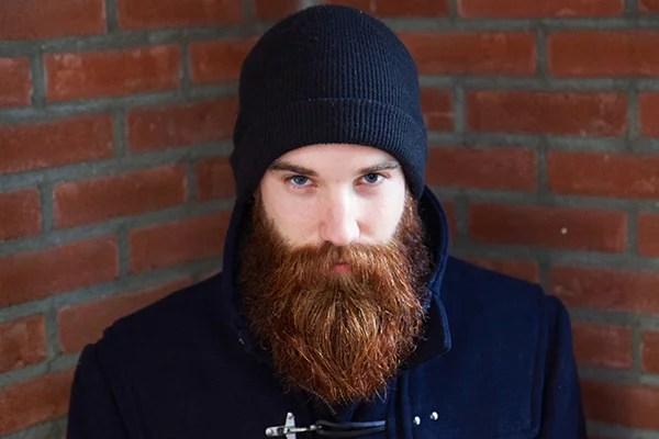 8 - de baard van jesse