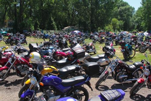 bikers festival10