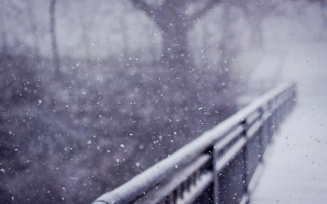 ploaie de iarna