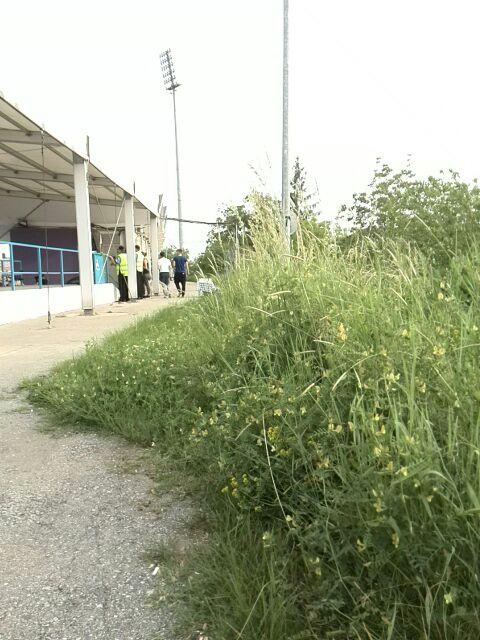 balarii la stadion3