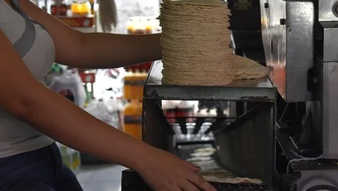 Tortillas feed for first need next to suffer an increase