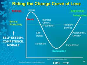 Change Management is Pain Management in Business and at Work - Feb. 2015 - Deb Best Practices rev. 23 Feb. 2015 Final