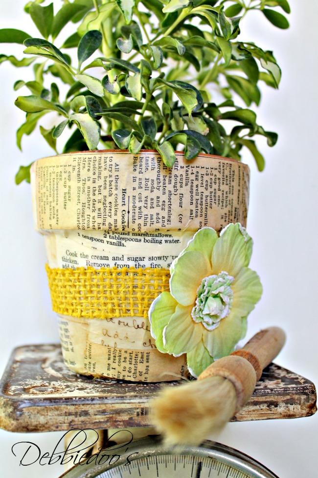 Ideas For Decorating Terra Cotta Pots In The Garden Debbiedoo's