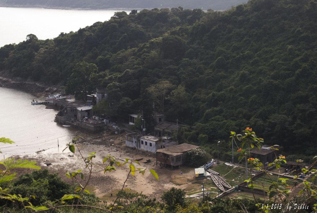 爛泥灣有幾間村屋,屋前還有菜田