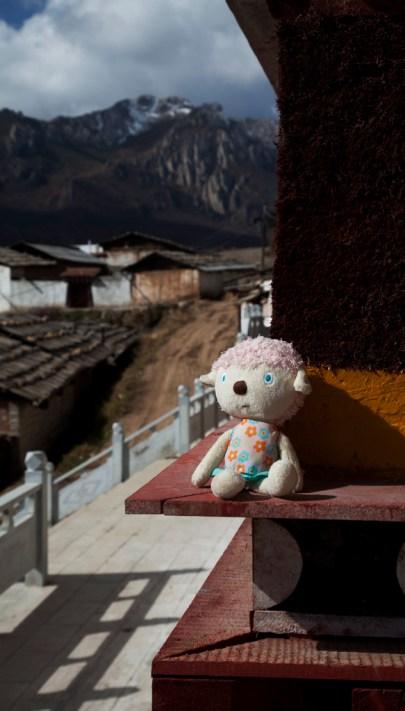 川西金秋獵影 2012 ~ 走進甘南藏區(29 Oct)