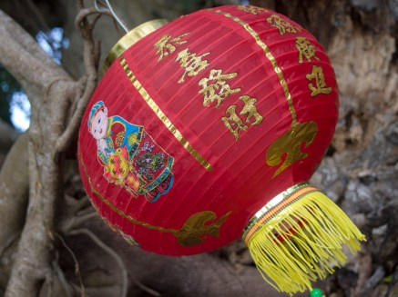 新年掛上紅燈籠