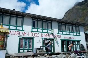 Amadablam View Lodge
