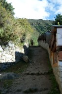 The path going up from the Gompa