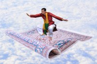 Magic Carpet Gallery