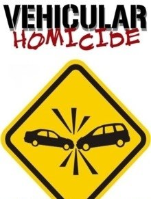 Image result for vehicular homicide