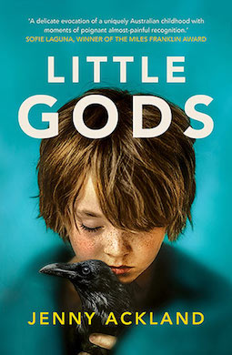 Book review: Little Gods by Jenny Ackland