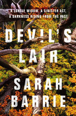 Book review: The Devil's Lair by Sarah Barrie