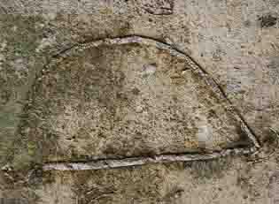 Deze doorgezaagde fossiele zee-egel zit in kalksteen die gebruikt is voor de bouw van de basiliek van Tongeren in België.