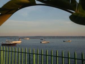 Summertime - Rye Playland Marina