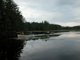 Bog River Flow Lows Lake  NYS Dept of Environmental