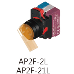 AP2F-2L21L