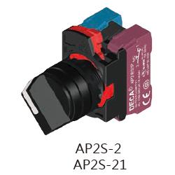 AP2S-2AP2S-21