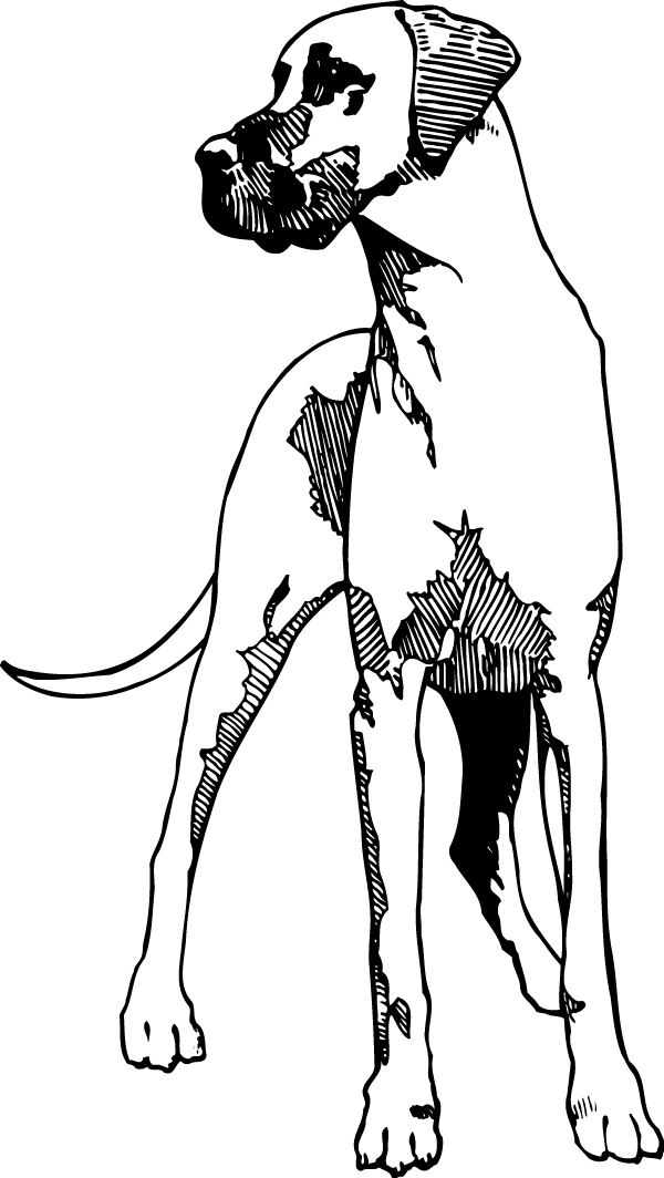 Old Yeller Decal