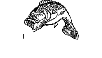 Leaping Largemouth Bass Decal