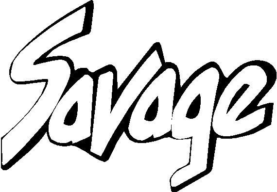 Suzuki LS 650 Savage (B) : Decals and Stickers, The Home