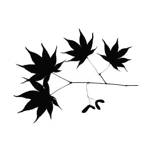 Maple leaves with seed on twig silhouette plants decals