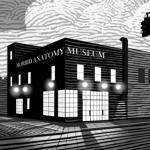 The Morbid Anatomy Museum