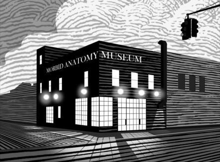 Morbid Anatomy Museum - Image: Morbid Anatomy