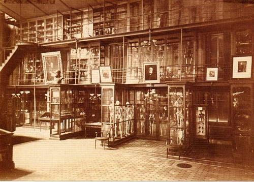 Mutter Museum 1800s