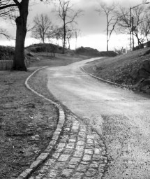 Career Decisions & the U-Shaped Happiness Curve