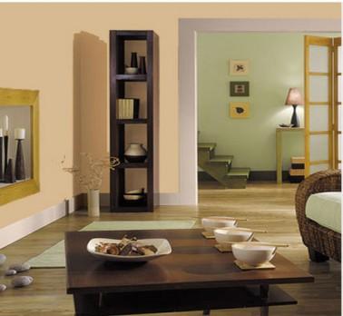 Peindre portes et plinthes salon avec couleurs complmentaires